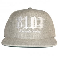 8103_Gray/White_Snapback